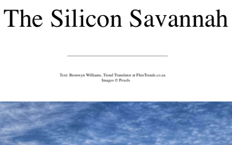 The Silicon Savannah - business trends - fintech